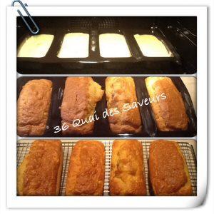 cake nordique aux deux saumons3